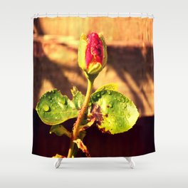 The Guilty Rose Shower Curtain