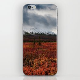 The Red Field iPhone Skin