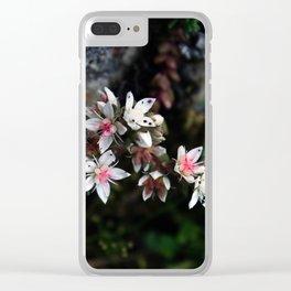 White stonecrop - Sedum Clear iPhone Case