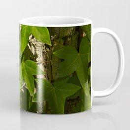 Sunny ivy leafs on a tree bark Coffee Mug