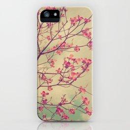 Vintage Pink Dogwood Tree in Flower iPhone Case
