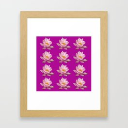 Rows with pink waterlilies with purple background Framed Art Print