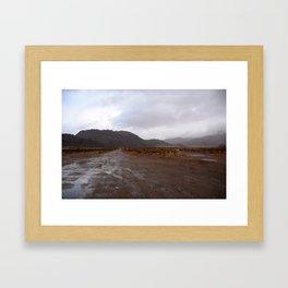 After the Desert Rain Framed Art Print
