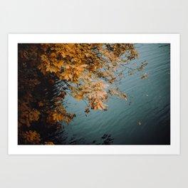 Autumn Copper + Teal Art Print