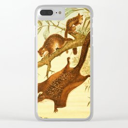 Royal Natural History 1893-1896 - RCH (Flying Squirrels) Clear iPhone Case