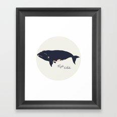 Right whale Framed Art Print