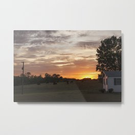 Sunset and Cows Metal Print
