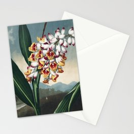 The Nodding Renealmia - The Temple of Flora Stationery Cards