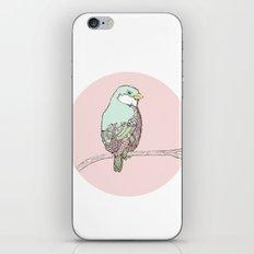 little Bird iPhone & iPod Skin