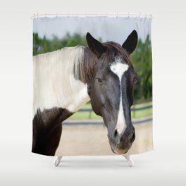 Decco Shower Curtain