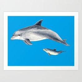 Bottlenose dolphin blue background Art Print