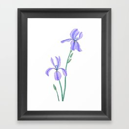 elegant purple iris Framed Art Print