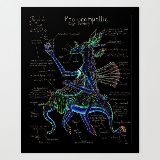 Photocompellia (light-gatherer) Art Print