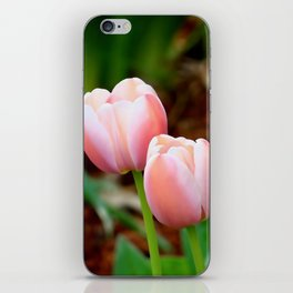 Pink Tulips for Spring iPhone Skin