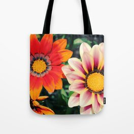 two are better! Tote Bag