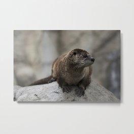 Doin' What He Otter Metal Print