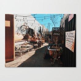 Junk Babe Canvas Print