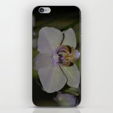 Orchid iPhone & iPod Skin