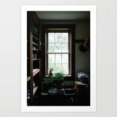 Vintage Pantry With Plants Art Print