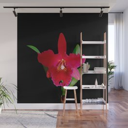 Red Cattleya orchid flower Wall Mural