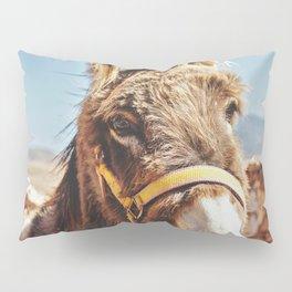 Donkey photo Pillow Sham