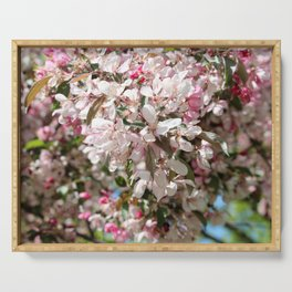 Light Pink Crab Apple Tree 1 Serving Tray