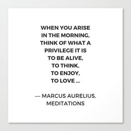 Stoic Inspiration Quotes - Marcus Aurelius Meditations - What a privilege it is to be alive Canvas Print