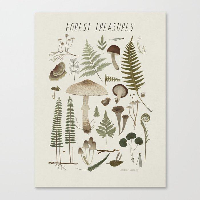 Forest treasures on light background Leinwanddruck