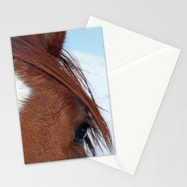 Gros Ventre Horse Stationery Cards