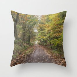 Autumn Cycle Path Throw Pillow