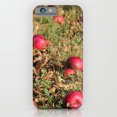 Resting Places iPhone 6s Slim Case