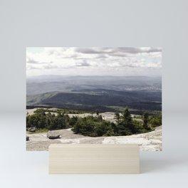 A Summer View Mini Art Print
