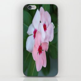 Blooming Beautiful Pink Impatiens Flowers iPhone Skin