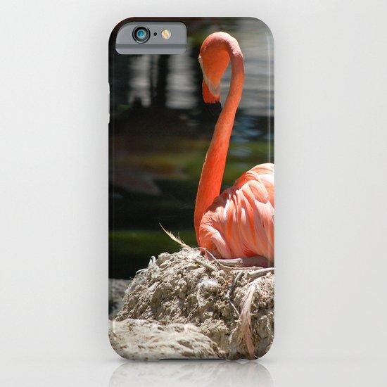 Sitting Flamingo iPhone & iPod Case