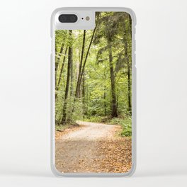 Cultural Landscape 2 Clear iPhone Case