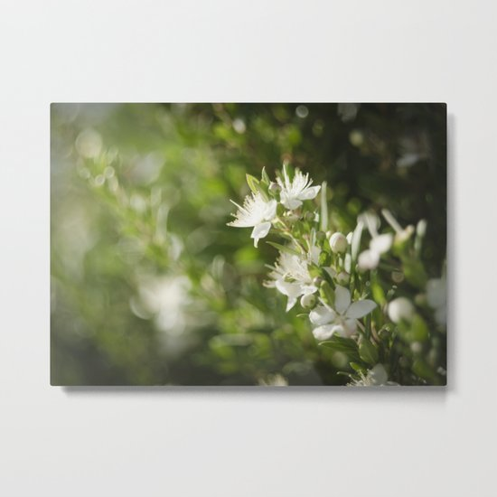 Bright Day, Tiny Flower Metal Print