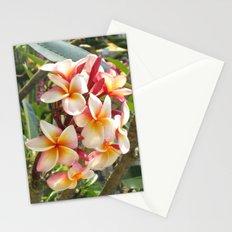rosa Frangipane Stationery Cards