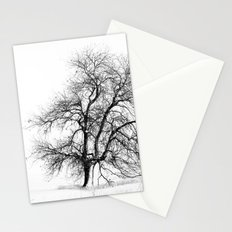 Winter White Stationery Cards