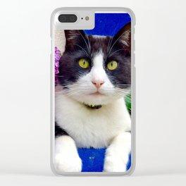 Orazio charming cat in the blue Clear iPhone Case
