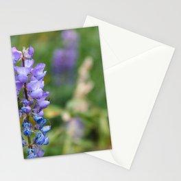 Wild Lupine   Landscape Photography Stationery Cards