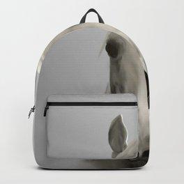 White Horse in Morning Mist Backpack