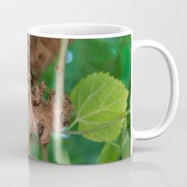 Old tree Coffee Mug