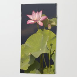 Pink Lotus by Teresa Thompson Beach Towel