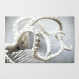 octopus   fig. 01 Canvas Print