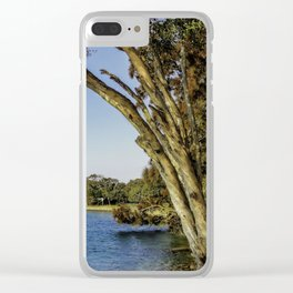 Gum Trees At Red Rock Clear iPhone Case