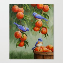 Bluebirds and Peaches Canvas Print