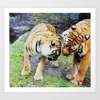 tigers Art Prints featuring Tigers by Irene Jaramillo