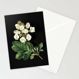 Vintage Oakleaf Hydrangea Botanical Illustration on Black (Portrait) Stationery Cards