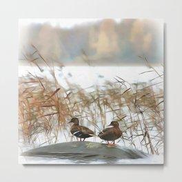 Ducks On A Pond Metal Print