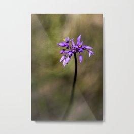 Pink Tassel flower Metal Print